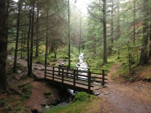 A footbridge carries the bridleway between Whinlatter and Thornthwaite across Comb Gill (Cumbria, UK).  © Copyright Graham Robson and licensed for reuse under this Creative Commons License (http://creativecommons.org/licenses/by-sa/2.0/)