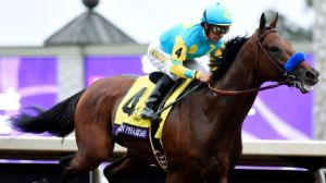 Victor Espinoza rode Triple Crown winner American Pharoah to victory in Saturday's Breeders' Cup Classic. Richard Mackson/USA TODAY Sports