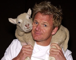 Gordon Ramsay with a lamb around his neck and shoulders.