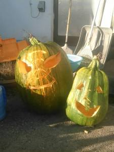 Two green jack o'lanterns in the day.