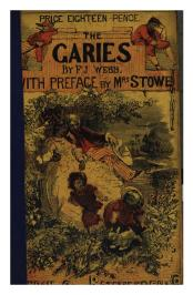A rather hard to read cover; 18 pence with preface by Mrs. Stowe