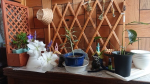 Houseplants, arrangement with lilies, blue salvia and balloon flowers, small knick-knacks that look like wooden churches in pastel colors, a couple of temple dogs guarding the plants.